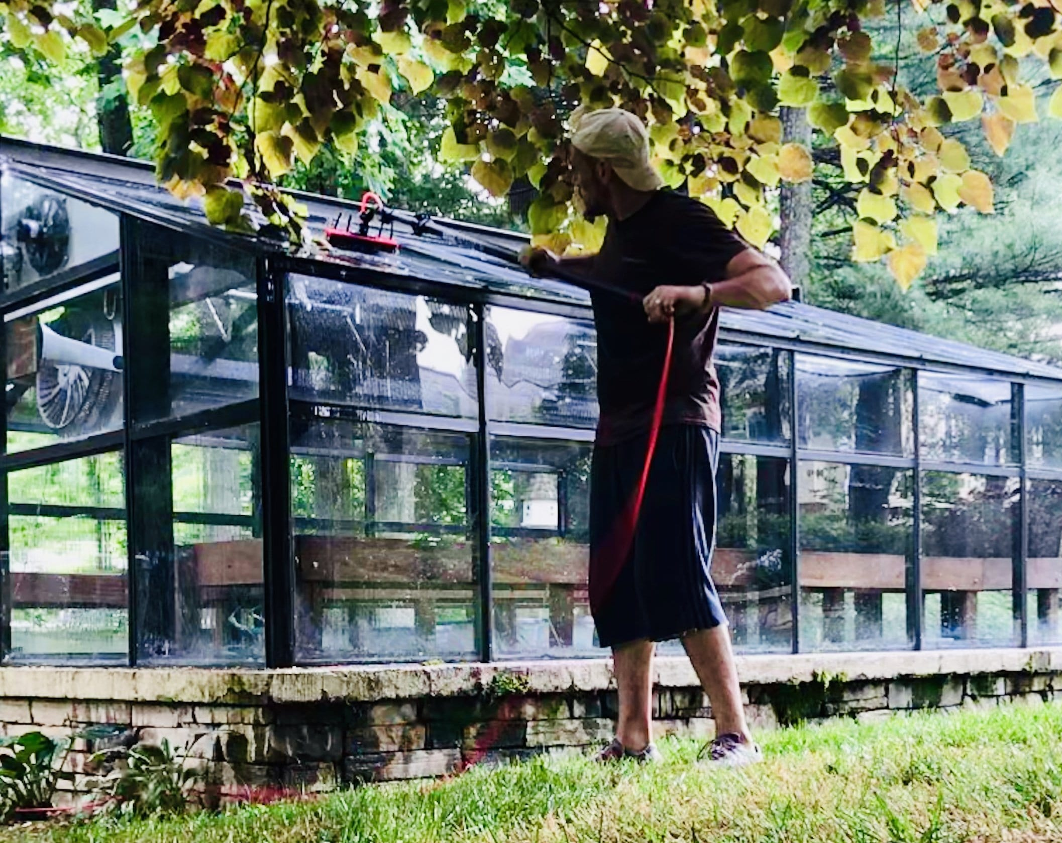 Picture of a man cleaning greenhouse windows: Greenhouse Cleaning Services