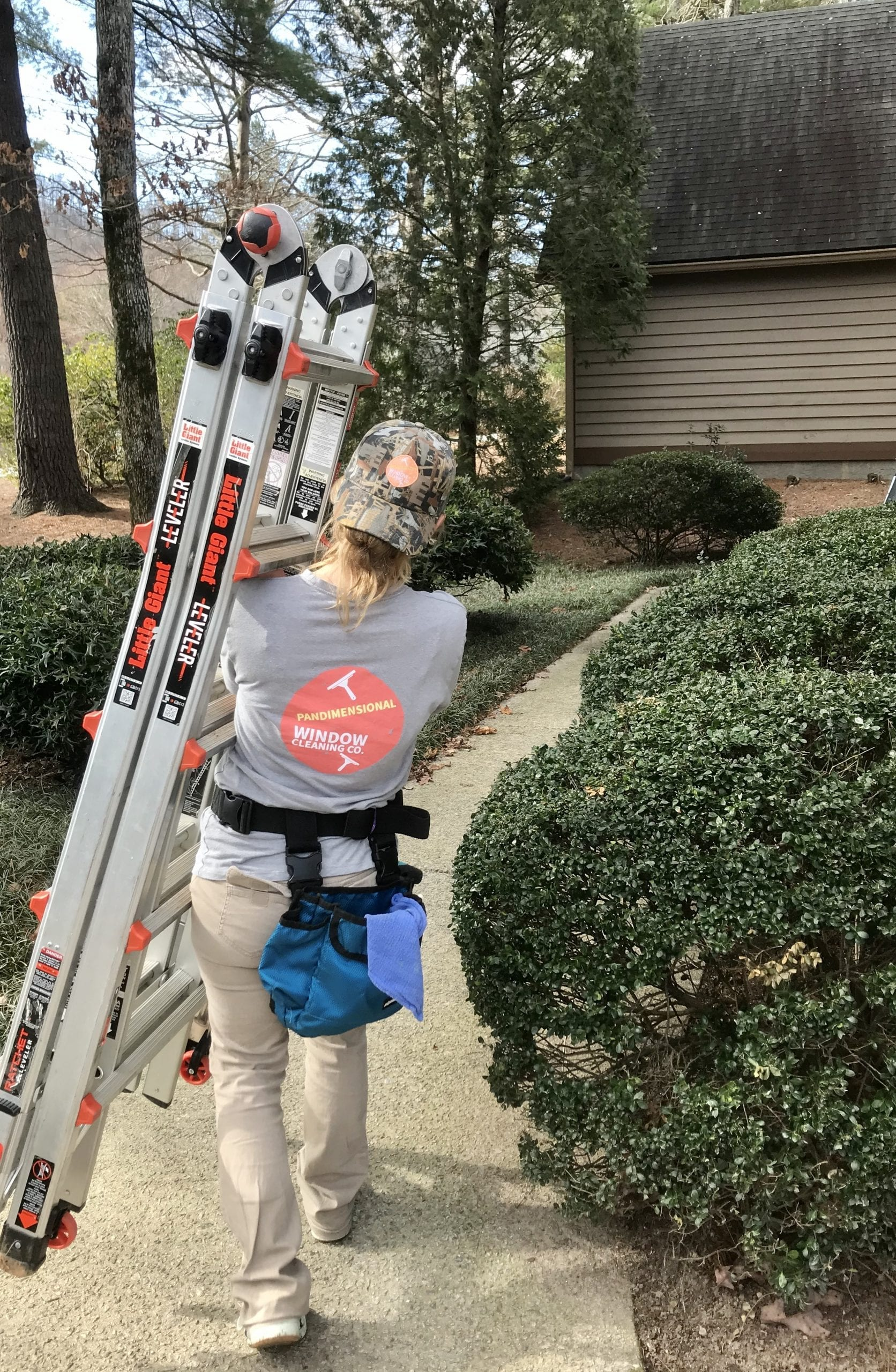 picture of a woman carrying ladder: Window Washers